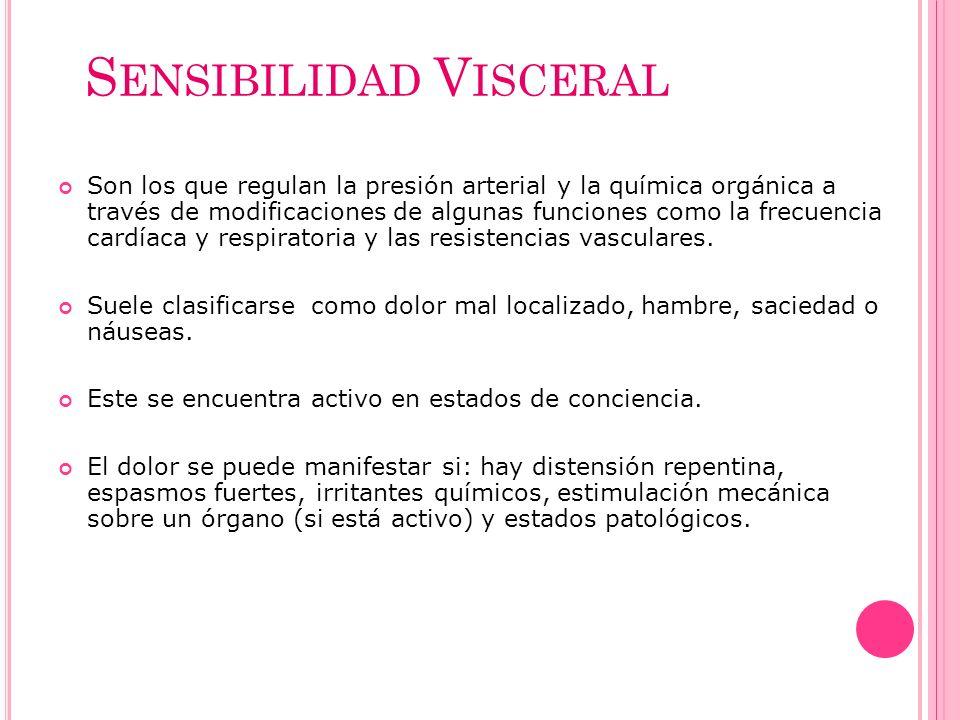 S ENSIBILIDAD V ISCERAL Son los que regulan la presión arterial y la química orgánica a través de modificaciones de algunas funciones como la frecuenc