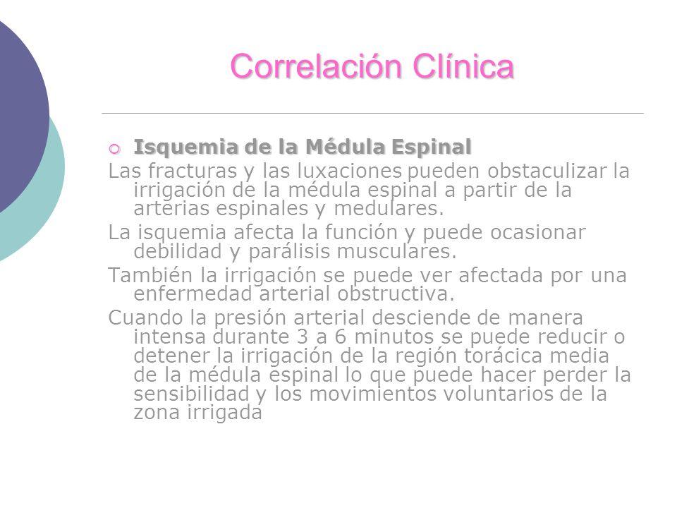 Correlación Clínica Isquemia de la Médula Espinal Isquemia de la Médula Espinal Las fracturas y las luxaciones pueden obstaculizar la irrigación de la médula espinal a partir de la arterias espinales y medulares.