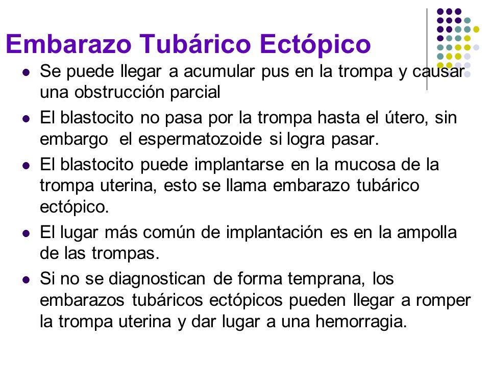 Embarazo Tubárico Ectópico Se puede llegar a acumular pus en la trompa y causar una obstrucción parcial El blastocito no pasa por la trompa hasta el ú