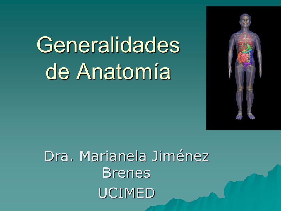 Generalidades de Anatomía Dra. Marianela Jiménez Brenes UCIMED