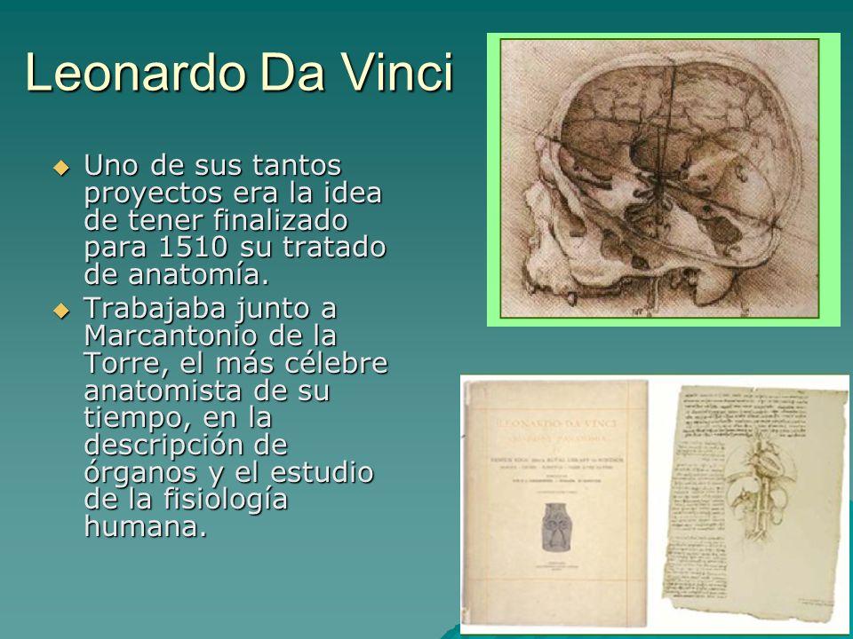 Leonardo Da Vinci Uno de sus tantos proyectos era la idea de tener finalizado para 1510 su tratado de anatomía. Uno de sus tantos proyectos era la ide
