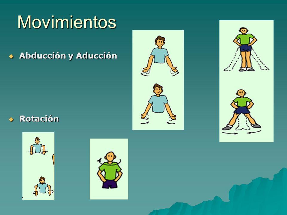 Movimientos Abducción y Aducción Abducción y Aducción Rotación Rotación