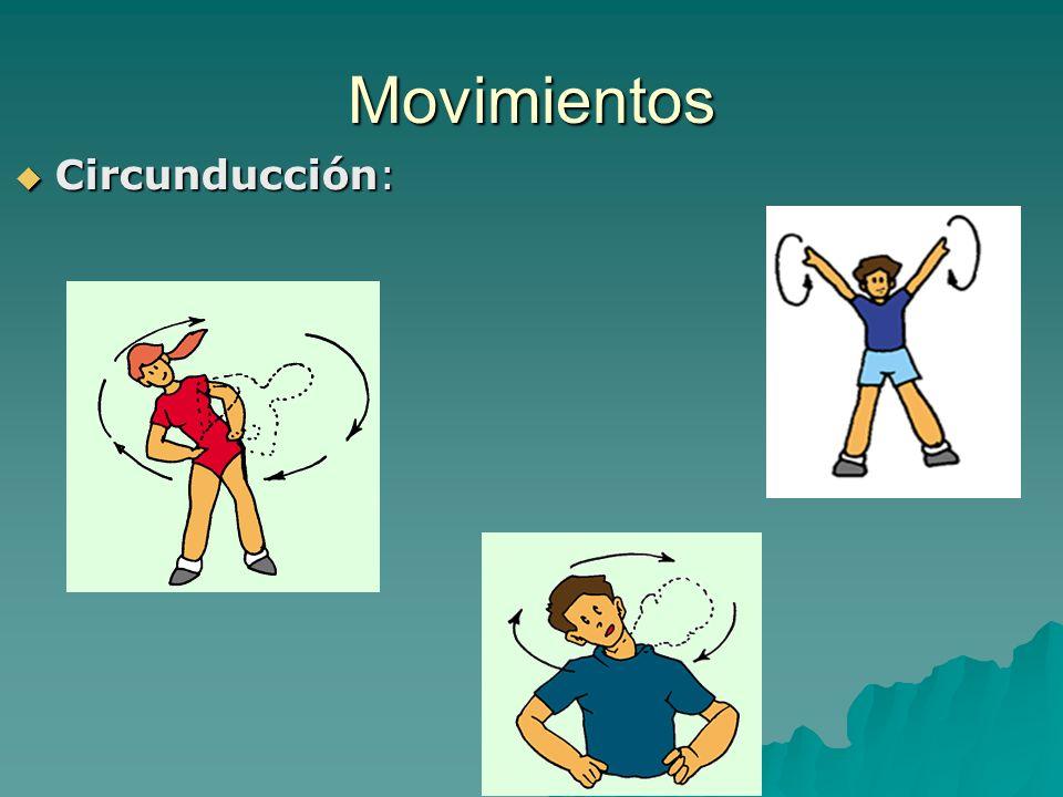 Movimientos Circunducción: Circunducción: