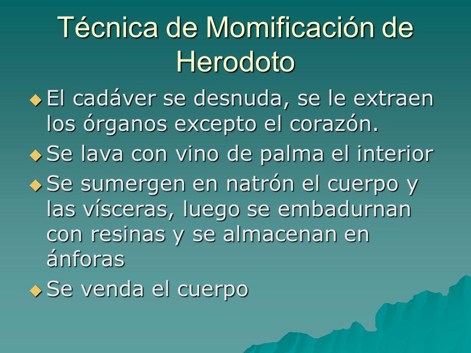 Generalidades de Miología