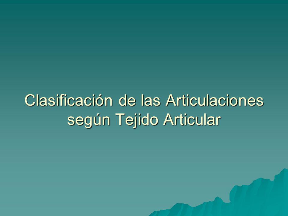 Clasificación de las Articulaciones según Tejido Articular