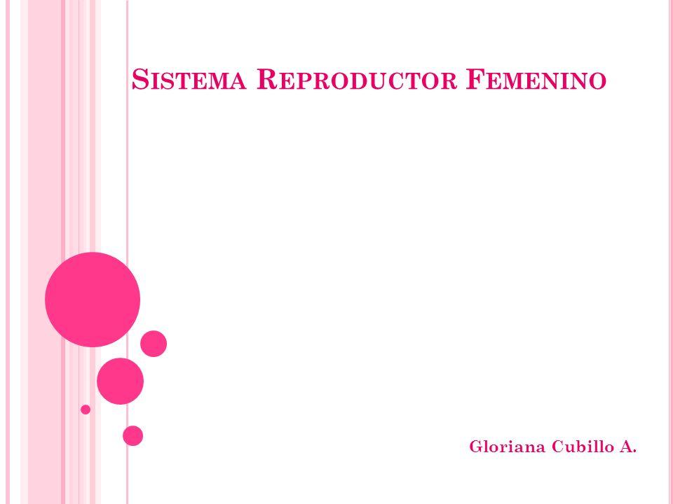 S ISTEMA R EPRODUCTOR F EMENINO Gloriana Cubillo A.
