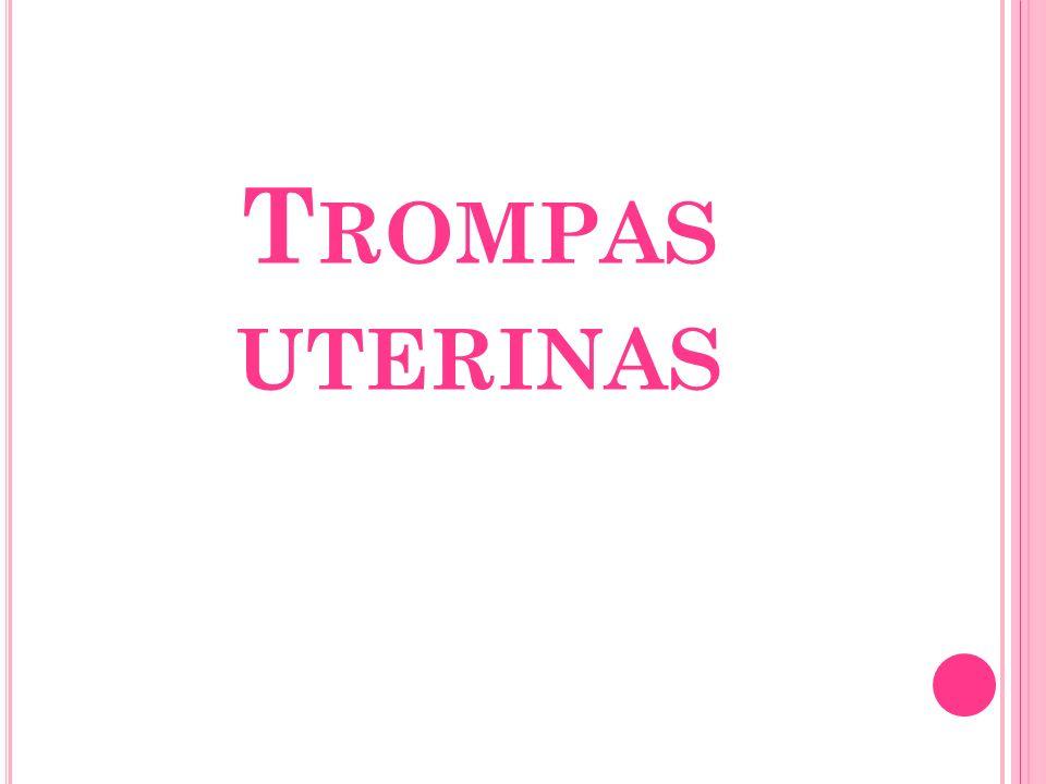 T ROMPAS UTERINAS