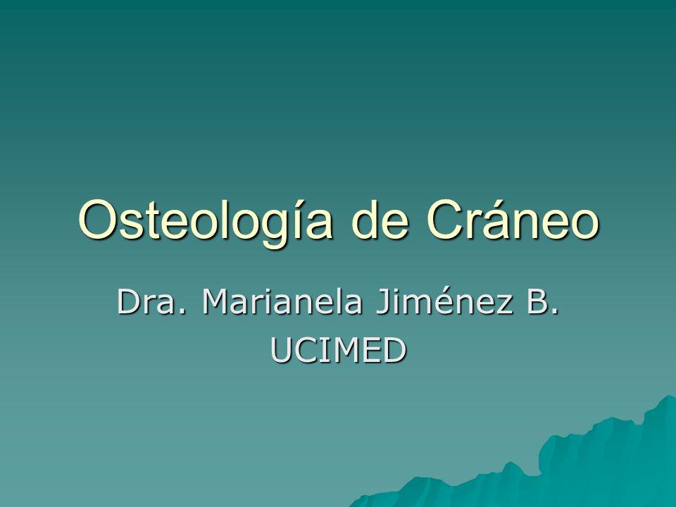 Osteología de Cráneo Dra. Marianela Jiménez B. UCIMED