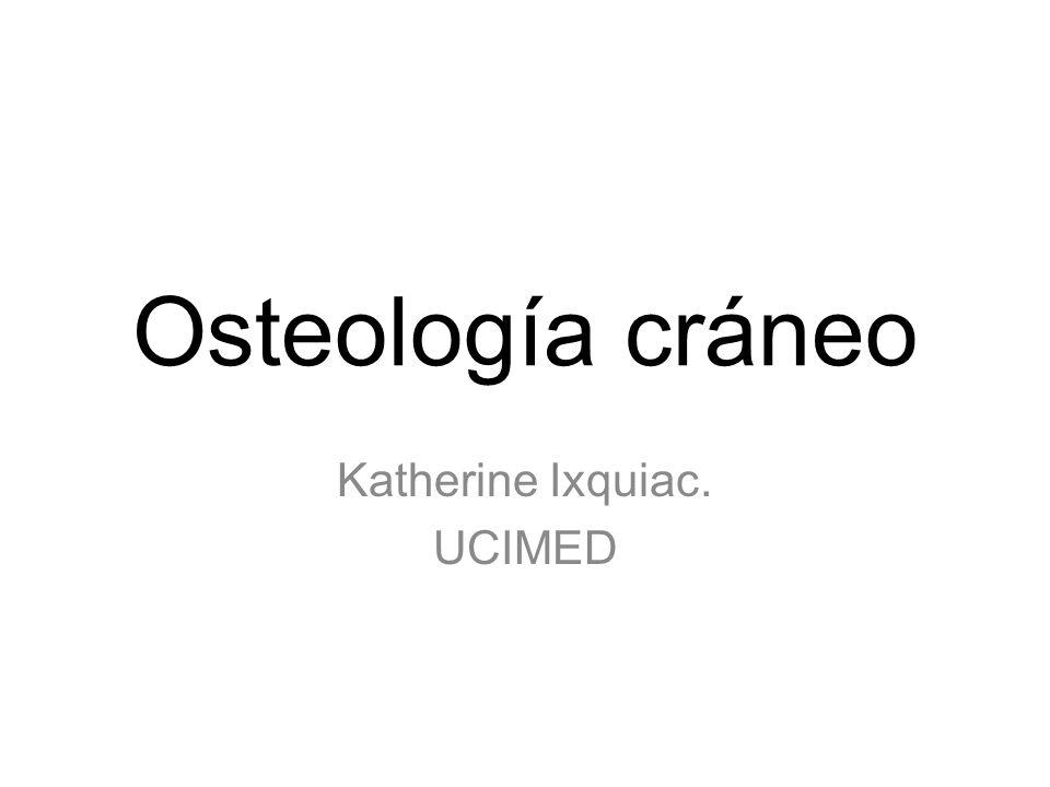 Osteología cráneo Katherine Ixquiac. UCIMED