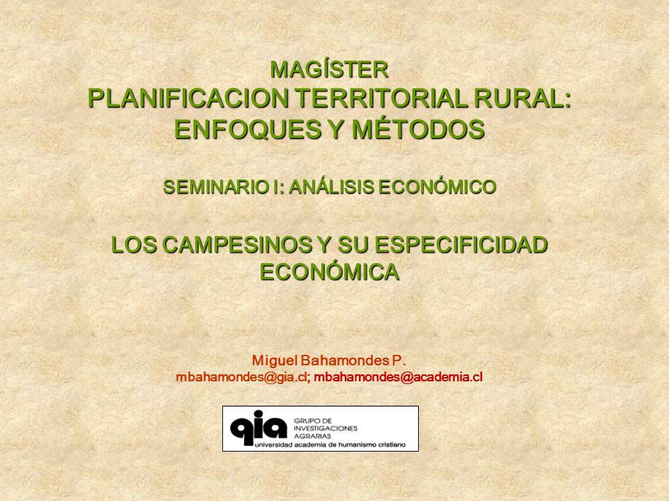 MAGÍSTER PLANIFICACION TERRITORIAL RURAL: ENFOQUES Y MÉTODOS SEMINARIO I: ANÁLISIS ECONÓMICO LOS CAMPESINOS Y SU ESPECIFICIDAD ECONÓMICA Miguel Bahamo
