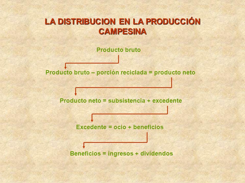 LA DISTRIBUCION EN LA PRODUCCIÓN CAMPESINA Producto bruto Producto bruto – porción reciclada = producto neto Producto neto = subsistencia + excedente