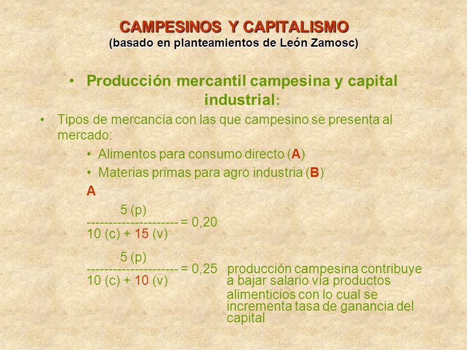 CAMPESINOS Y CAPITALISMO (basado en planteamientos de León Zamosc) Producción mercantil campesina y capital industrial : Tipos de mercancía con las qu