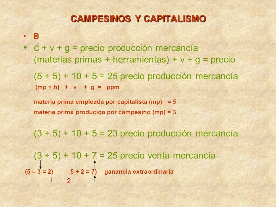 CAMPESINOS Y CAPITALISMO B c + v + g = precio producción mercancía (materias primas + herramientas) + v + g = precio (5 + 5) + 10 + 5 = 25 precio prod