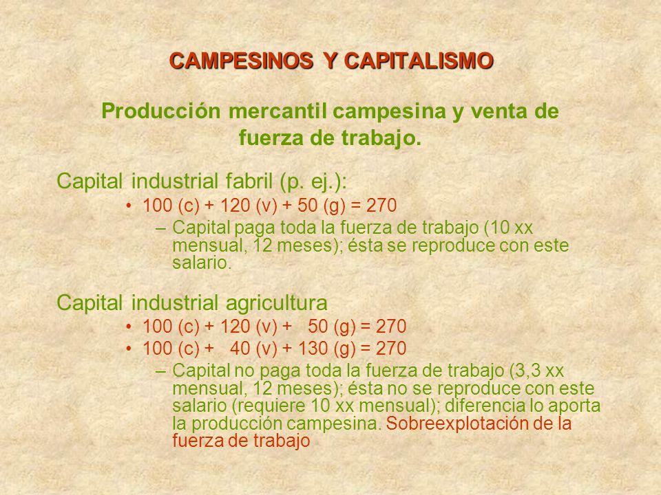 Producción mercantil campesina y venta de fuerza de trabajo. Capital industrial fabril (p. ej.): 100 (c) + 120 (v) + 50 (g) = 270 –Capital paga toda l