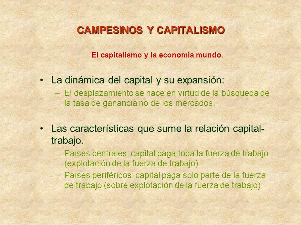 El capitalismo y la economía mundo. La dinámica del capital y su expansión: –El desplazamiento se hace en virtud de la búsqueda de la tasa de ganancia