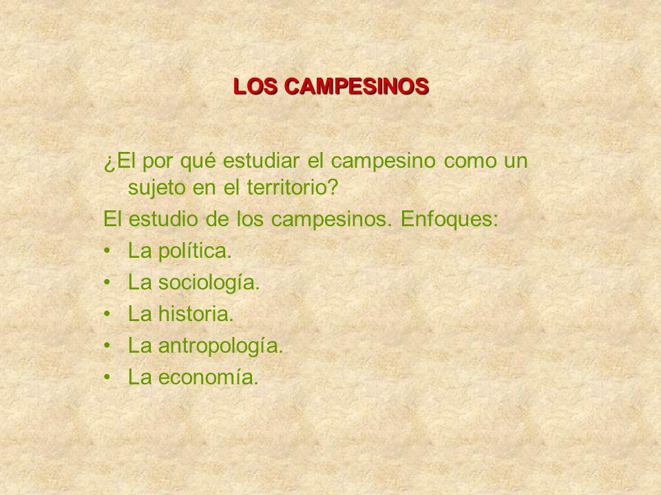 LOS CAMPESINOS ¿El por qué estudiar el campesino como un sujeto en el territorio? El estudio de los campesinos. Enfoques: La política. La sociología.