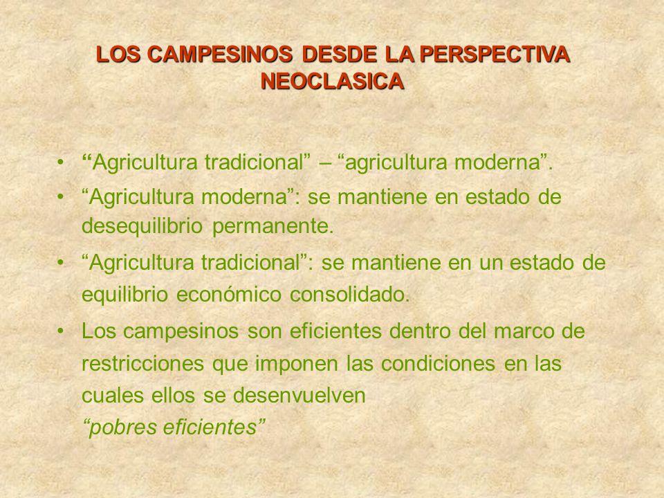 LOS CAMPESINOS DESDE LA PERSPECTIVA NEOCLASICA Agricultura tradicional – agricultura moderna. Agricultura moderna: se mantiene en estado de desequilib