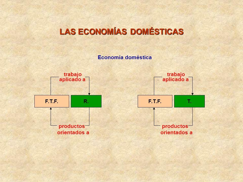 F.T.F.R. trabajo aplicado a productos orientados a Economía doméstica LAS ECONOMÍAS DOMÉSTICAS F.T.F.T. trabajo aplicado a productos orientados a