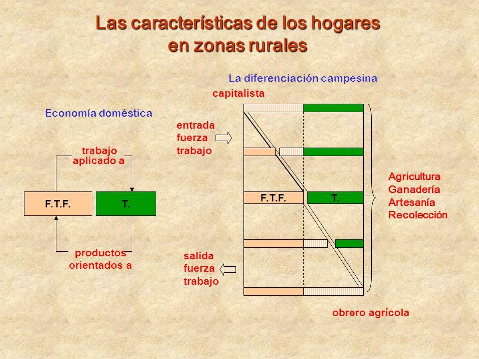 Las características de los hogares en zonas rurales F.T.F.T. trabajo aplicado a productos orientados a F.T.F.T. capitalista obrero agrícola Economía d