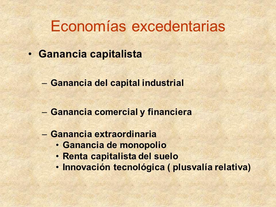 Economías excedentarias Ganancia capitalista –Ganancia del capital industrial –Ganancia comercial y financiera –Ganancia extraordinaria Ganancia de mo