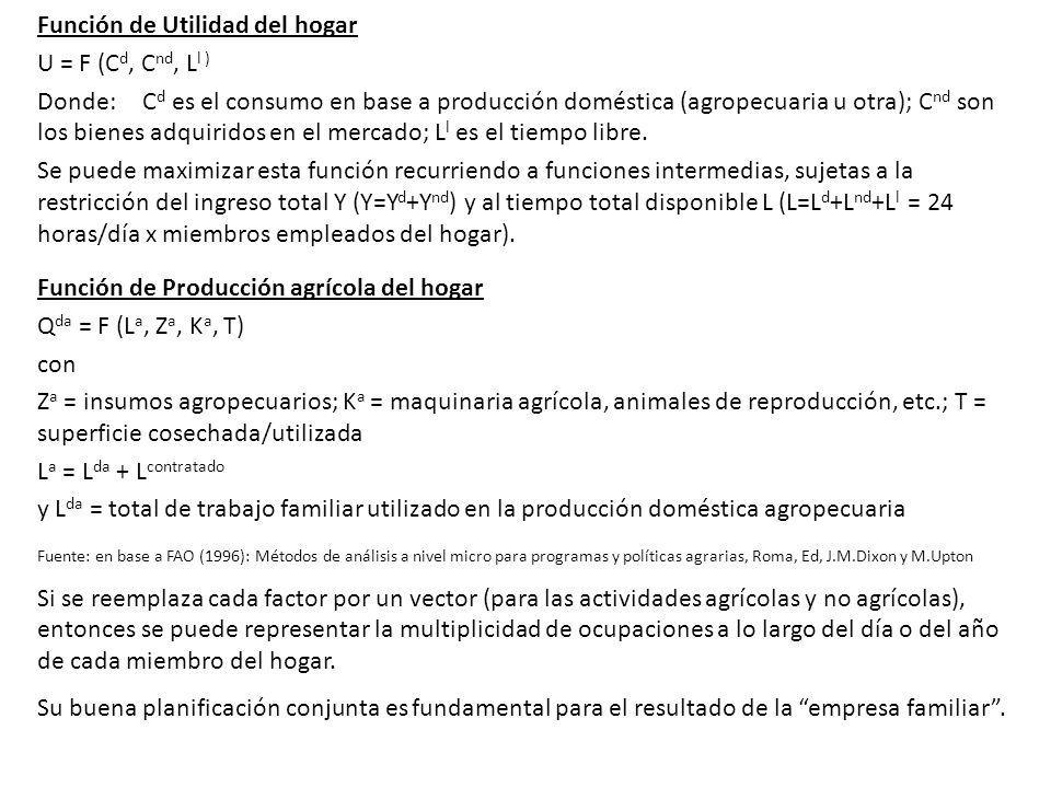 Función de Utilidad del hogar U = F (C d, C nd, L l ) Donde: C d es el consumo en base a producción doméstica (agropecuaria u otra); C nd son los bien