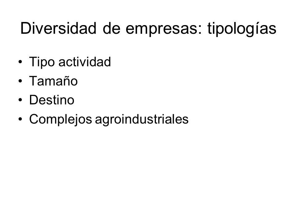 Diversidad de empresas: tipologías Tipo actividad Tamaño Destino Complejos agroindustriales
