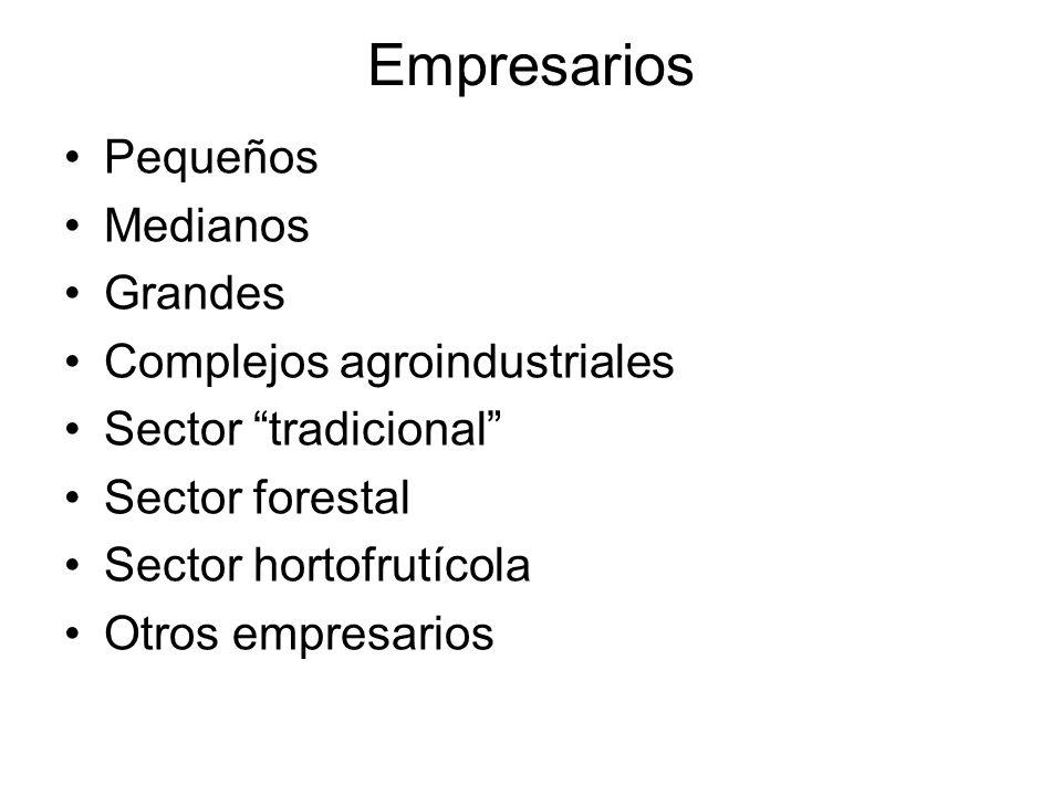 Empresarios Pequeños Medianos Grandes Complejos agroindustriales Sector tradicional Sector forestal Sector hortofrutícola Otros empresarios