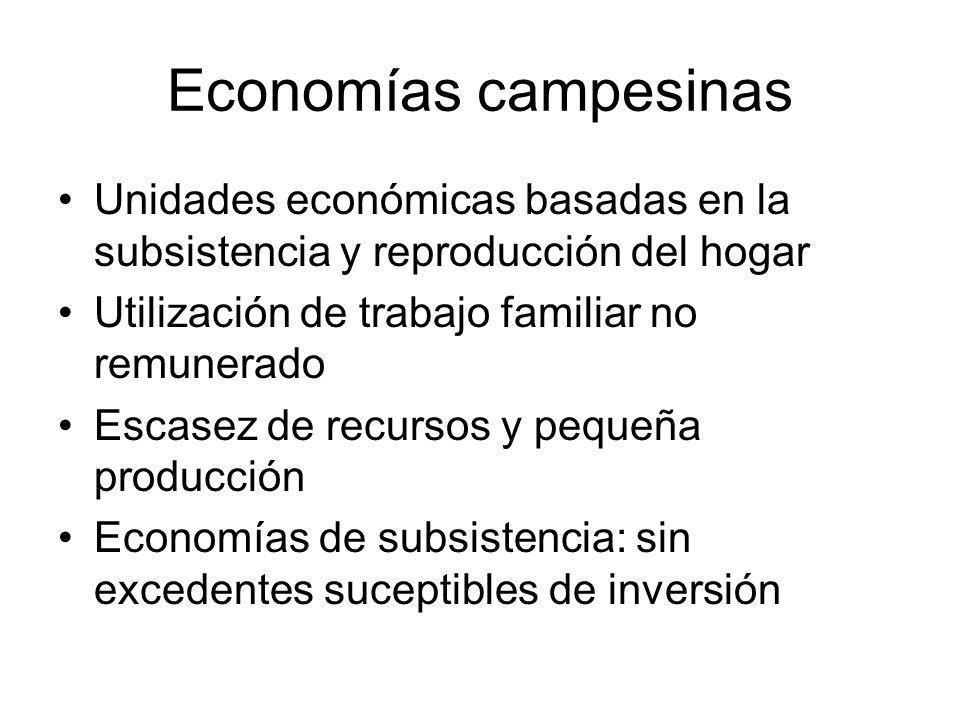 Economías campesinas Unidades económicas basadas en la subsistencia y reproducción del hogar Utilización de trabajo familiar no remunerado Escasez de