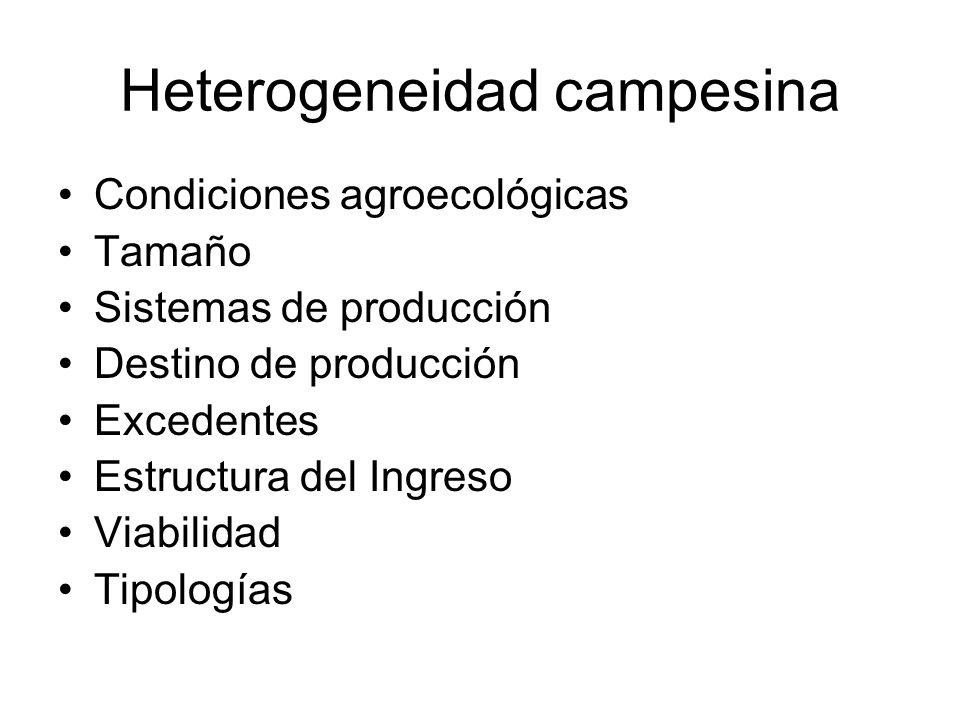 Heterogeneidad campesina Condiciones agroecológicas Tamaño Sistemas de producción Destino de producción Excedentes Estructura del Ingreso Viabilidad T