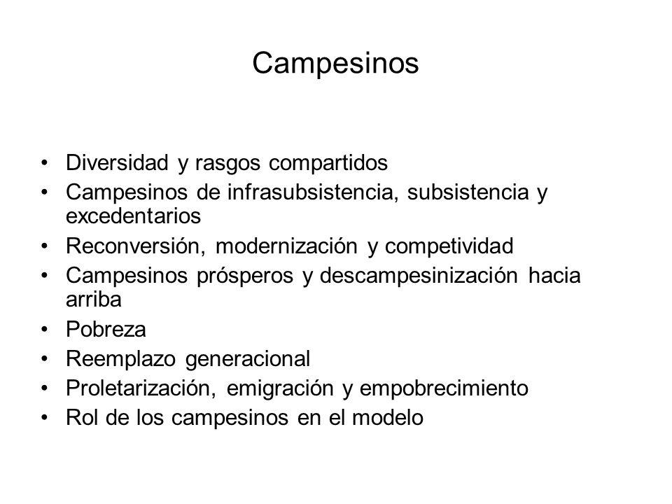 Campesinos Diversidad y rasgos compartidos Campesinos de infrasubsistencia, subsistencia y excedentarios Reconversión, modernización y competividad Ca