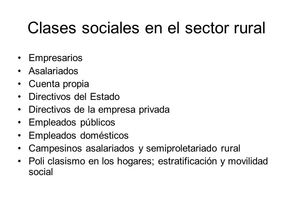 Clases sociales en el sector rural Empresarios Asalariados Cuenta propia Directivos del Estado Directivos de la empresa privada Empleados públicos Emp