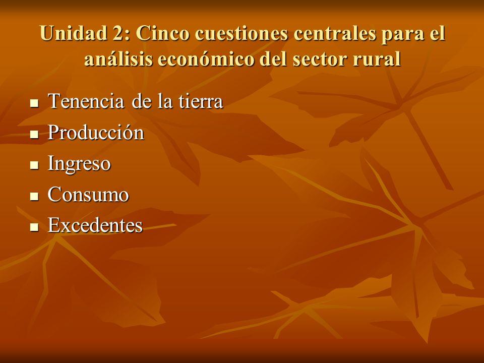 Unidad 2: Cinco cuestiones centrales para el análisis económico del sector rural Tenencia de la tierra Tenencia de la tierra Producción Producción Ing