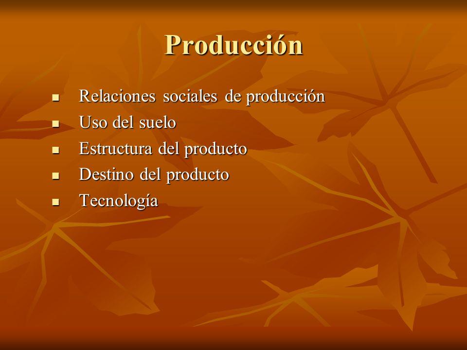 Producción Relaciones sociales de producción Relaciones sociales de producción Uso del suelo Uso del suelo Estructura del producto Estructura del prod