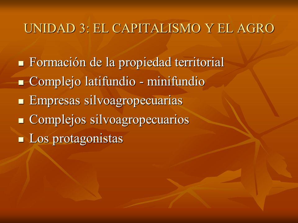 UNIDAD 3: EL CAPITALISMO Y EL AGRO Formación de la propiedad territorial Formación de la propiedad territorial Complejo latifundio - minifundio Comple