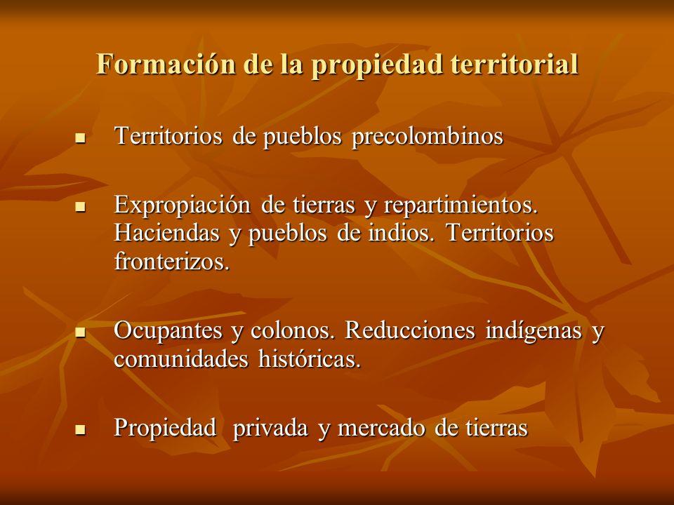 Formación de la propiedad territorial Territorios de pueblos precolombinos Territorios de pueblos precolombinos Expropiación de tierras y repartimient