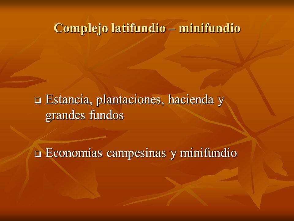 Complejo latifundio – minifundio Estancia, plantaciones, hacienda y grandes fundos Estancia, plantaciones, hacienda y grandes fundos Economías campesi