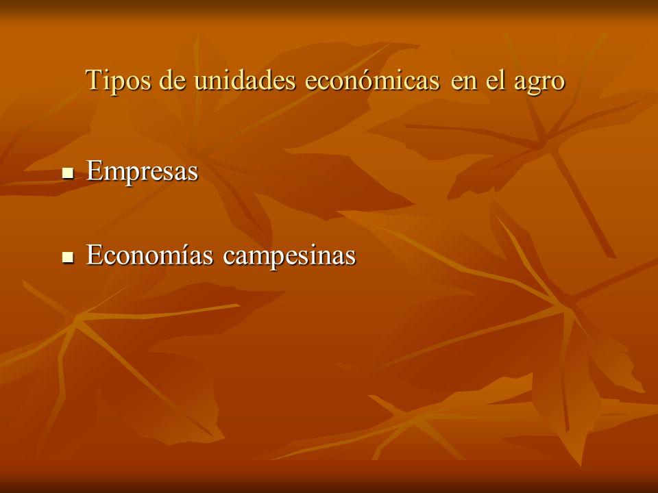 Tipos de unidades económicas en el agro Empresas Empresas Economías campesinas Economías campesinas