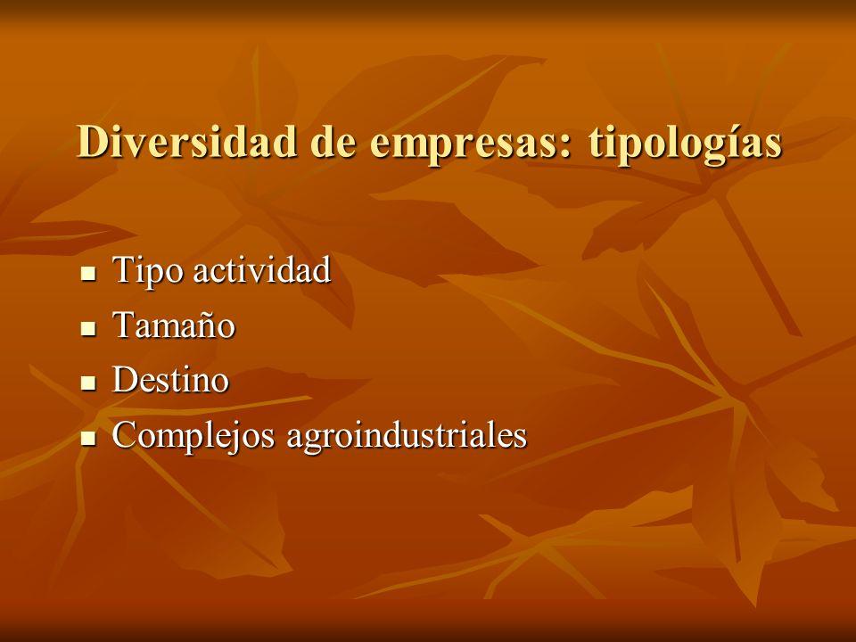 Diversidad de empresas: tipologías Tipo actividad Tipo actividad Tamaño Tamaño Destino Destino Complejos agroindustriales Complejos agroindustriales