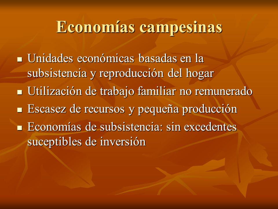 Economías campesinas Unidades económicas basadas en la subsistencia y reproducción del hogar Unidades económicas basadas en la subsistencia y reproduc