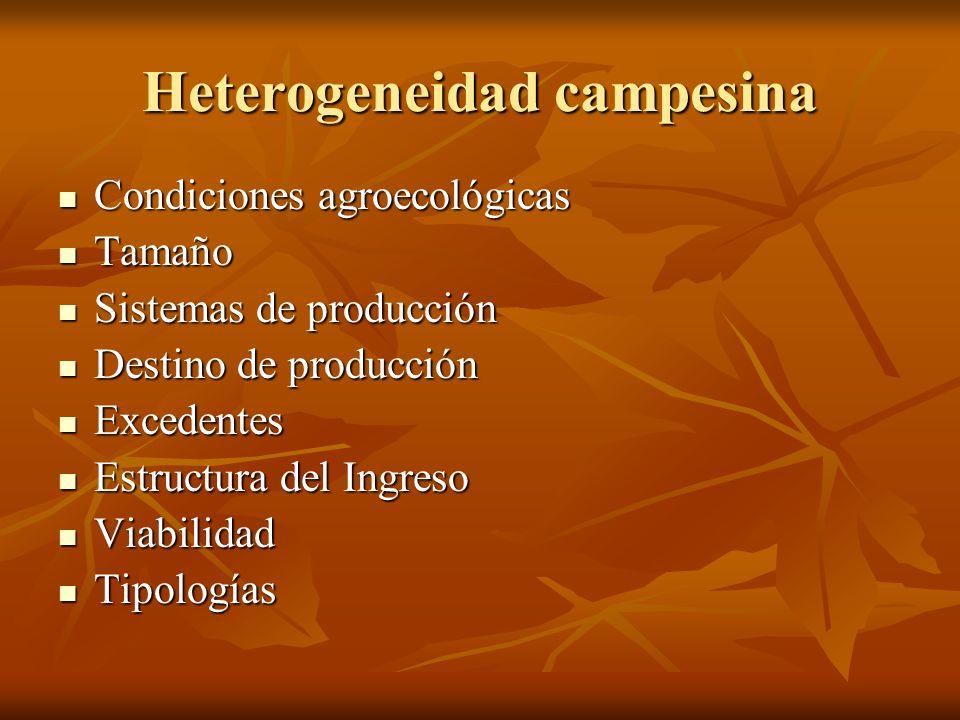 Heterogeneidad campesina Condiciones agroecológicas Condiciones agroecológicas Tamaño Tamaño Sistemas de producción Sistemas de producción Destino de