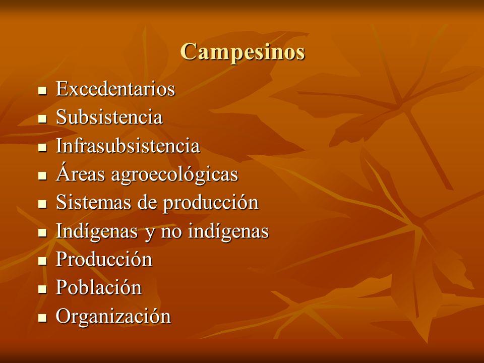 Campesinos Excedentarios Excedentarios Subsistencia Subsistencia Infrasubsistencia Infrasubsistencia Áreas agroecológicas Áreas agroecológicas Sistema