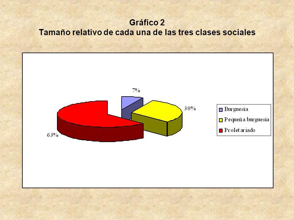 Gráfico 2 Tamaño relativo de cada una de las tres clases sociales