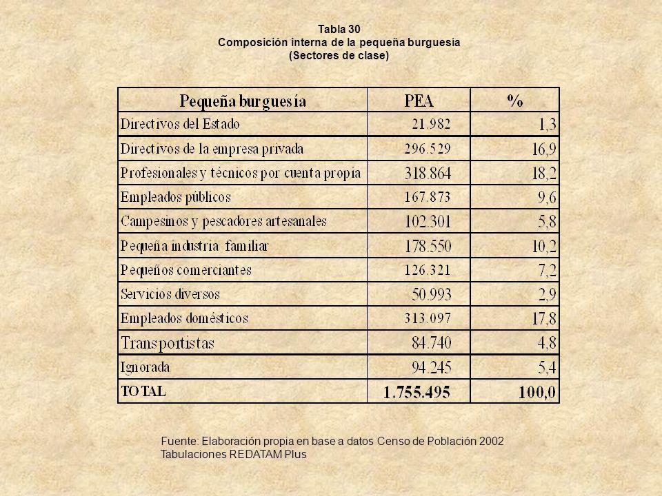 Tabla 30 Composición interna de la pequeña burguesía (Sectores de clase) Fuente: Elaboración propia en base a datos Censo de Población 2002 Tabulacion