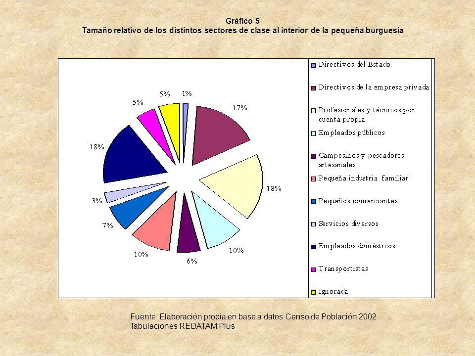 Gráfico 5 Tamaño relativo de los distintos sectores de clase al interior de la pequeña burguesía Fuente: Elaboración propia en base a datos Censo de P