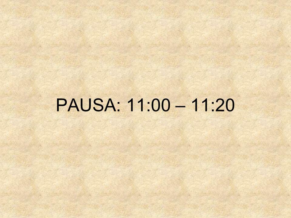 PAUSA: 11:00 – 11:20