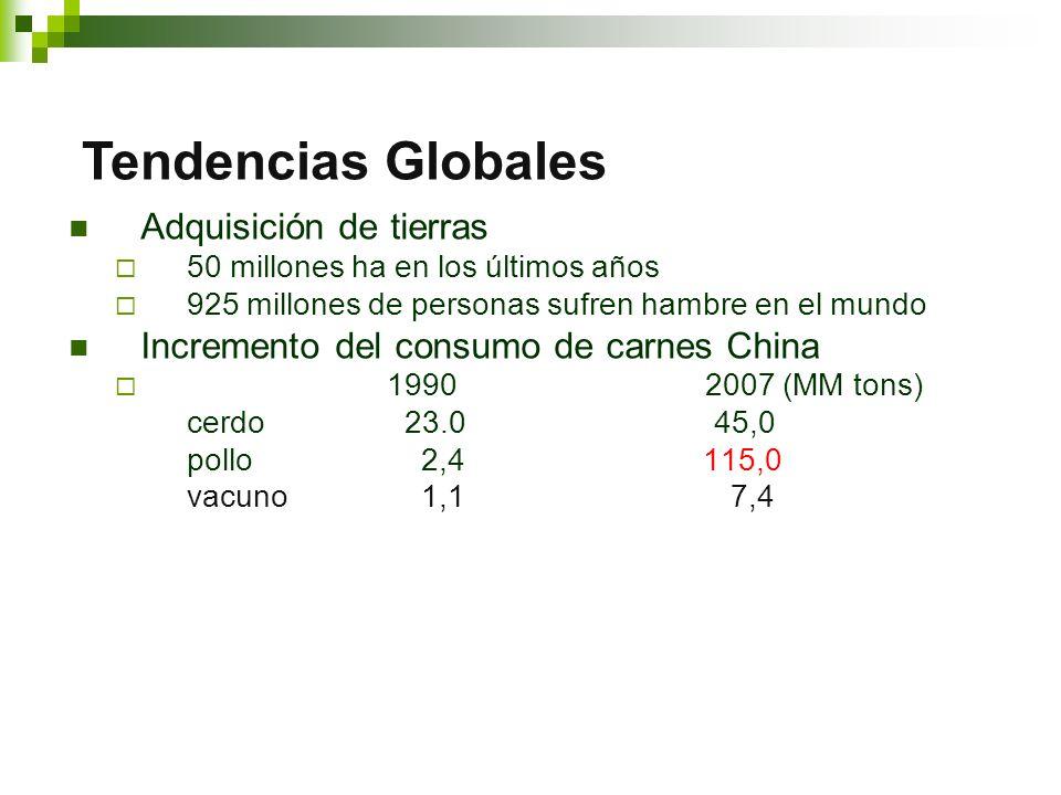 Adquisición de tierras 50 millones ha en los últimos años 925 millones de personas sufren hambre en el mundo Incremento del consumo de carnes China 19902007 (MM tons) cerdo 23.0 45,0 pollo 2,4 115,0 vacuno 1,1 7,4 Tendencias Globales