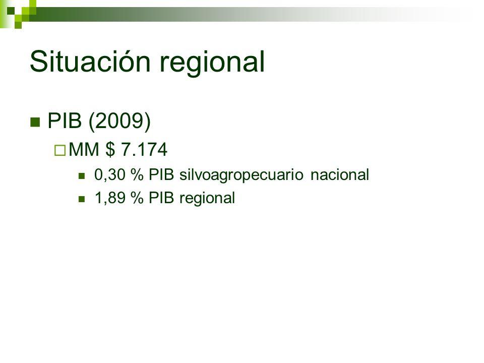 Situación regional PIB (2009) MM $ 7.174 0,30 % PIB silvoagropecuario nacional 1,89 % PIB regional