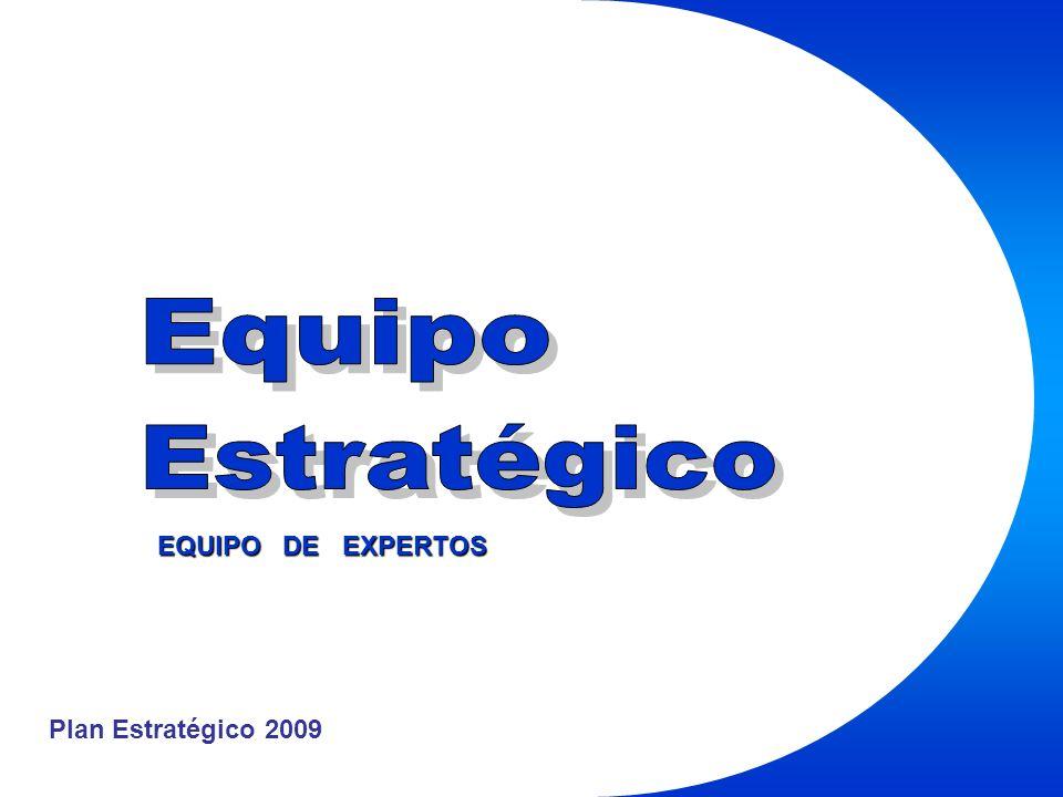 Plan Estratégico 2009 EQUIPO DE EXPERTOS