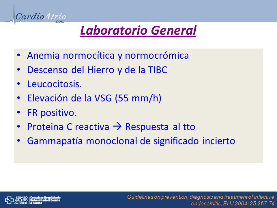 Laboratorio General Anemia normocítica y normocrómica Descenso del Hierro y de la TIBC Leucocitosis. Elevación de la VSG (55 mm/h) FR positivo. Protei