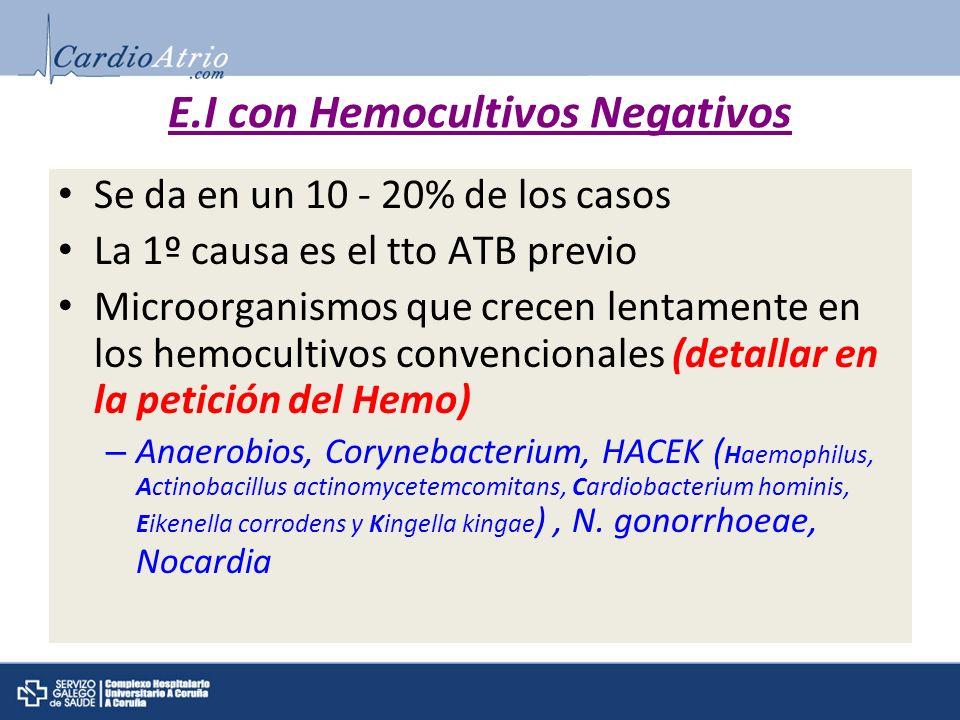 E.I con Hemocultivos Negativos Se da en un 10 - 20% de los casos La 1º causa es el tto ATB previo Microorganismos que crecen lentamente en los hemocul